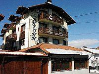 Vikoni Family Hotel  hotel bansko